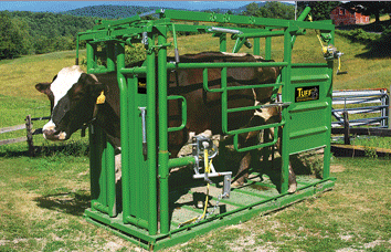 Hoof Trimming Chute